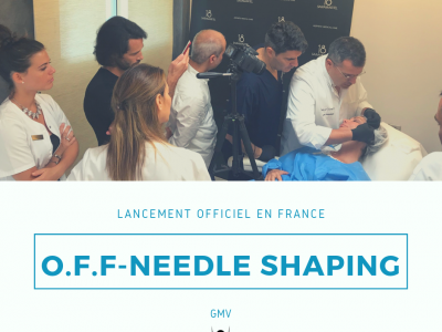 Formation O.F.F & Needle Shaping à Antibes 24/10/2019